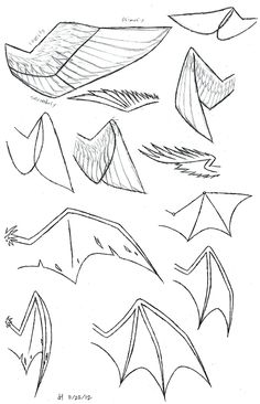how to draw folded dragon wings | Wing Study by VibrantEchoes