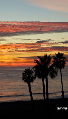 Santa Monica | Los Angeles | CALIFORNIA