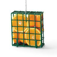"Orioles in an Instant | Birds & Blooms: ""You don't need a special feeder to invite orioles to your yard this spring. Just take an old suet cage feeder and fill it with oranges instead. The orioles will love this special treat!...Try putting grapes or berries in a suet feeder to see what feathered friends you can attract."""