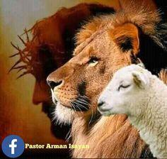 Jesus Christ Painting, Jesus Art, Jesus Wallpaper, Lion Wallpaper, Christian Paintings, Christian Art, Lion Of Judah Jesus, La Salette, Lion And Lamb