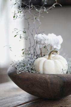 Table decoration autumn - 51 suggestions for an autumnal table - Herbst-Deko - Halloween White Pumpkin Centerpieces, Pumpkin Table Decorations, Decoration Table, Thanksgiving Decorations, Table Centerpieces, Fall Home Decor, Autumn Home, Holiday Decor, White Pumpkins