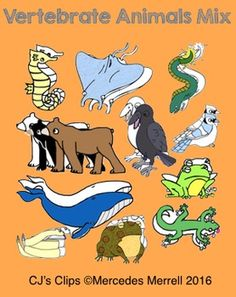 This set of clip art includes 23 images of vertebrate animals.  Included are 13 color, and 12 in black and white, These were individually drawn by my 13 year old grandson. I am now offering the set in my store in hopes of raising some $ for his Jr. High School trip to Washington D.C.!