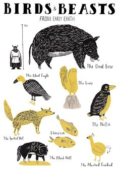 Birds & Beasts From Early Earth. Kids Prints, Art Prints, Collage Illustration, My Favorite Image, Graphic Design Inspiration, Illustrators, Beast, Sketches, Creatures