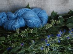 Natural plant dyed wool yarn light blue. FINGERING sock yarn weight. Organic. Suitable for knitting tablet weaving, crochet and nalbinding.