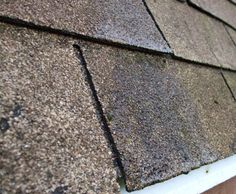 Extend the life of your roof shingles  #roofing #roofstyle #tinroof #roofshingles #curbappeal