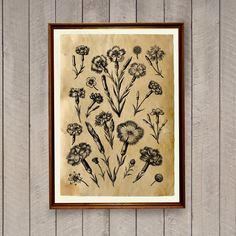 Botanical poster Flower print Floral art Rustic decor AK425 by artkurka on Etsy https://www.etsy.com/listing/242598685/botanical-poster-flower-print-floral-art