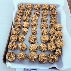 Bees Knees Energy Bites // dates, peanut butter, honey, oats, raisins, almonds, sunflower seeds, chocolate chips