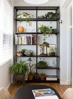 plantas na estante e outras ideias #decor #greeninside #garden