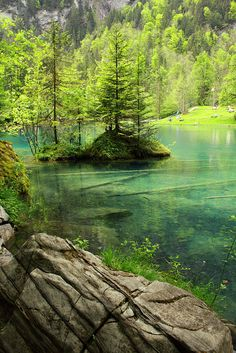 Blausee, A piece of Heaven on earth #Switzerland