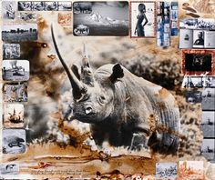 Peter Beard - shotnlust