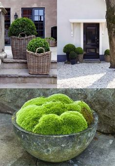 STIL INSPIRATION: 3 must-haves in my garden
