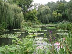 Monet's garden, Giverny FRANCE by rosebud2