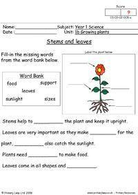 2nd Grade Reading Worksheets, Worksheets For Class 1, Spelling Worksheets, English Worksheets For Kids, English Lessons For Kids, Science Worksheets, Science Lessons, Science Education, Seasons Worksheets
