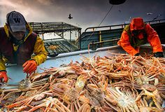 Hilary Clinton Plans to Continue Crackdown on Global IUU Fishing, Seafood Fraud if Elected Seafood News