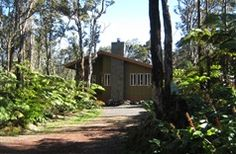 Volcano Singing Forest Cottage in volcano, Hawaii | B&B Rental