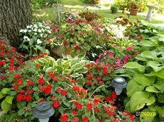 planning a partial shade garden