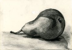 Pear, charcoal and pencil still life 2