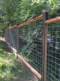 garden fence 46 simple and cheap privacy fence ideas Hog Wire Fence, Deer Fence, Farm Fence, Fence Gate, Chicken Wire Fence, Front Yard Fence, Wire Fence Panels, Cattle Panel Fence, Welded Wire Fence