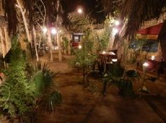Lebo's Soweto Backpackers Hostel, Hotel Reviews, Lodges, Backpacking, South Africa, Trip Advisor, Travel, Outdoor, Outdoors