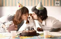 Dog Birthday Party - Dog Party - Enjoy Professional Pet Psychic Party Readings at Your Next Pet Event - Click the link to Get Started. Puppy Birthday, Animal Birthday, Birthday Ideas, Birthday Hats, Birthday Pictures, Birthday Wishes, Kindness To Animals, Dog Milk, Puppy Party