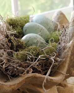 simple easy bird nest tutorial and beach table and decorations