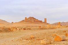 Syria, Palmyra,  dic.2010 341