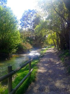 Planeta Mamy: RUTA DEL AGUA DE CHELVA (Valencia) Country Scenes, Beautiful Places In The World, Spain Travel, Vacation Destinations, Garden Bridge, Where To Go, Trip Planning, Paths, Places To Visit