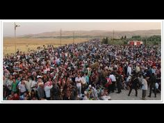 Must See! Crazy European Immigration Crisis - We say welcome and that is what they do! Un Refugee, Refugee Crisis, Question And Answer, This Or That Questions, Syrian Refugees, European History, One In A Million, Republic Of The Congo, Obama