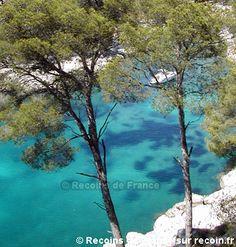 Randonnée, Port Miou, Métropole Aix Marseille Provence, Bouches du Rhône