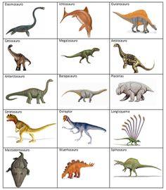 Quando i bambini adorano i dinosauri - Trail Tutorial and Ideas Dinosaurs Names And Pictures, Names Of Dinosaurs, Dinosaur Crafts, Dinosaur Party, Dinosaur Birthday, Jurassic Park Party, Dinosaur Images, Preschool Science, Prehistoric Animals