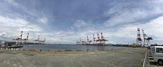 ガントリークレーン 神戸港では向かい合う姿が本物のキリンの群れに・・・ The gantry crane of Kobe Port faces the real giraffes in face-to-face ...