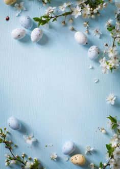 Kate Easter Photography Backdrop,Easter Blue Wall Colorful Eggs Photography Backdrops For Photographers,No Wrinkle Seamless Collapsible Photo Studio Backgrounds Ostern Wallpaper, Frühling Wallpaper, Spring Wallpaper, Flower Wallpaper, Wallpaper Backgrounds, Easter Backgrounds, Flower Backgrounds, Photo Backgrounds, Easter Backdrops