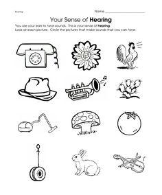 22 Best Social Studies Worksheets and Activities images in