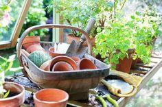 BoGrønt er en frivillig hagesenterkjede med hagesentre spredt over hele landet. Vi satser friskt, og for tiden har vi 62 medlemsbedrifter fordelt i de fleste fylkene. Mange av medlemmene driver gartneri, planteskole eller anleggs- gartnervirksomhet ved siden av. Vårt kjedekontor eies av medlemmene og ligger i Larvik.