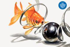 #기초디자인#금붕어#쇠구슬#개체표현#자연물 Material Library, Object Drawing, Art Sketches, Fashion Art, Fish, Pets, Drawings, Artwork, Animals