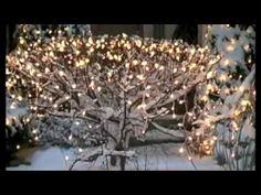 It's the most wonderful time of the year - Andy Williams Christmas Feeling, Christmas Time Is Here, Merry Christmas Everyone, Merry Little Christmas, Christmas Is Coming, Christmas Holidays, Christmas Decorations, Classic Christmas Songs, Christmas Music