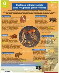 Fiche exposés : Quelques animaux peints dans les grottes préhistoriques
