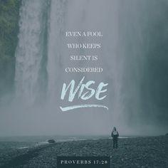Proverbs 17:28