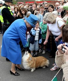 HM Queen Elizabeth II meets a corgi called Spencer as she arrives at Welshpool train station on April 28, 2010 in Welshpool, Wales. The Queen and Duke of Edinburgh are on a two day visit to North Wales.