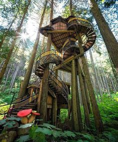 The aptly named Enchanted Forest is a must-see along the Trans-Canada Highway, between Revelstoke and Sicamous in British Columbia. It is BC's tallest, highest Tree House // Photo by Viktoria Haack // Pin curated by for Beautiful Tree Houses, Cool Tree Houses, Tree House Designs, In The Tree, Play Houses, Future House, Tiny House, Beautiful Places, Places To Visit