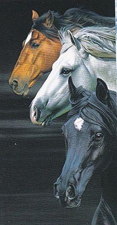 Horses 3 Horse Heads Beach Towel copa http://www.amazon.com/dp/B00UZF97XG/ref=cm_sw_r_pi_dp_Jh2fvb1DZ8071