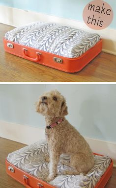 The cutest DIY pet bed ideas that are sure to make your favorite fur babies happy. See the best designs for 2020 and pick your favorite! Diy Pet, Diy Dog Bed, Cheap Dog Beds, Pet Beds For Dogs, Cat Furniture, Diy Stuffed Animals, Dog Toys, Fur Babies, Your Pet