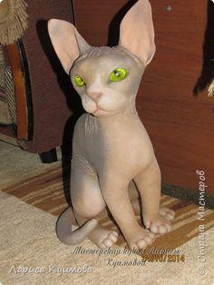 Кот из капрона