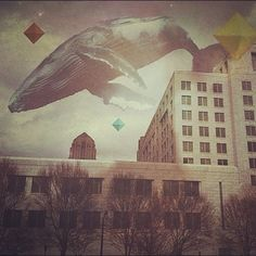 Instagram iphoneography. It's a sky whale!