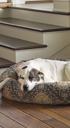 Our Ashton Pet Bed surrounds your dog in dream-inducing comfort. The breathable microvelvet cover is eight times stronger than cotton and repels pet hair, dirt, and moisture.