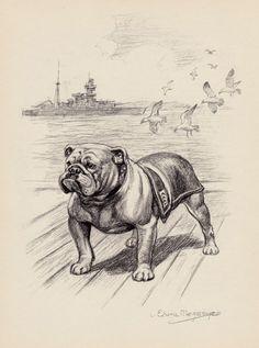Beautiful BULLDOG Print Sturdy Guy Bulldog Art by plaindealing
