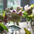 "The English Gardener: ""Let's Get #britishflowers Trending"" Gardenista"