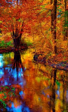 Fall foliage reflected in the West River, Guilford, Connecticut, United States