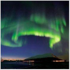 Hurtigruten 5 Day Arctic Highlights