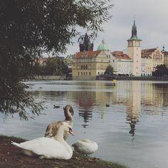 In beautiful Prague